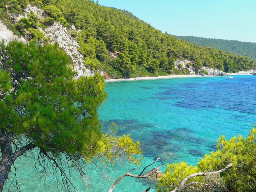 Пляж острова Скопелос в Греции, фото 5