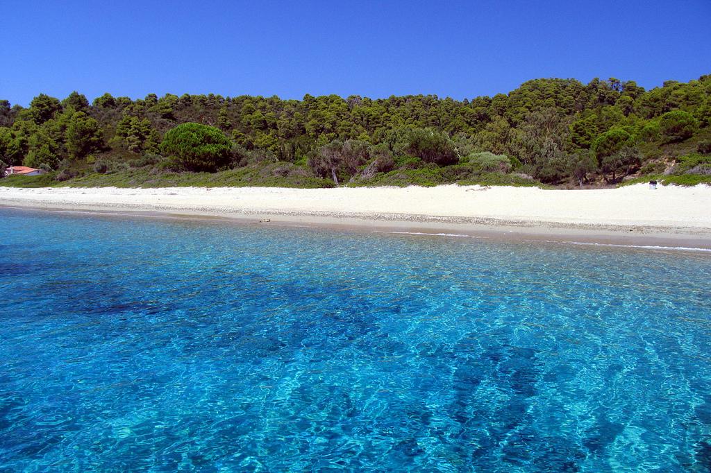 Пляж острова Скопелос в Греции, фото 14