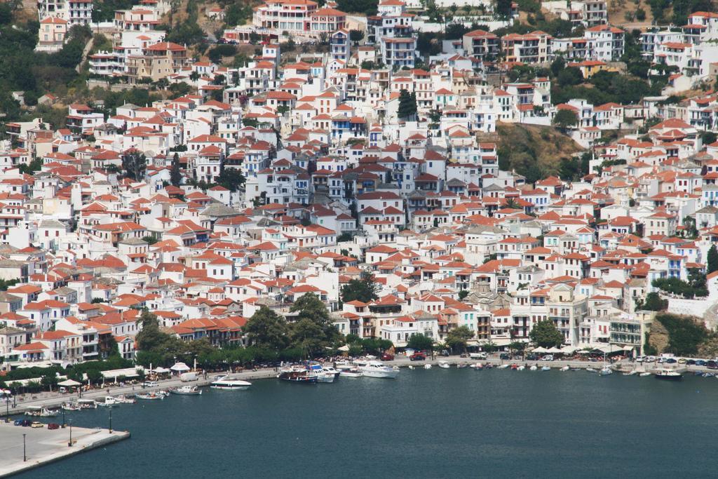 Пляж острова Скопелос в Греции, фото 15