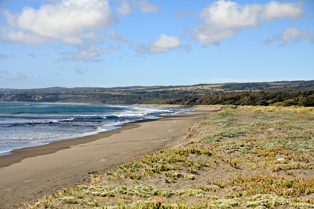 Пляж Пичилему в Чили, фото 3