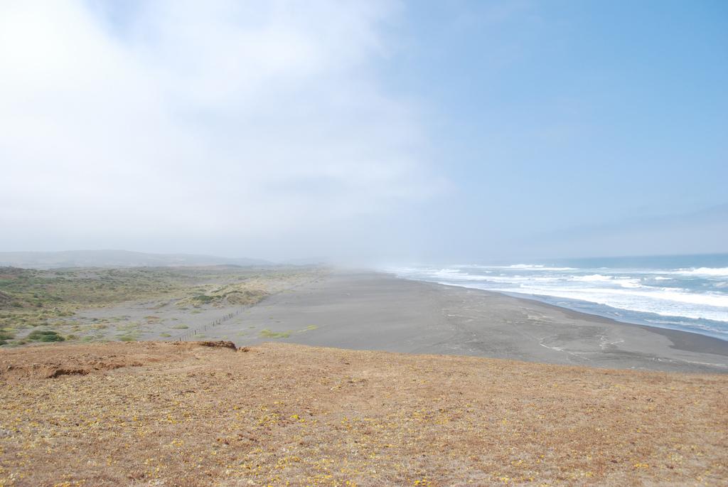 Пляж Пичилему в Чили, фото 5
