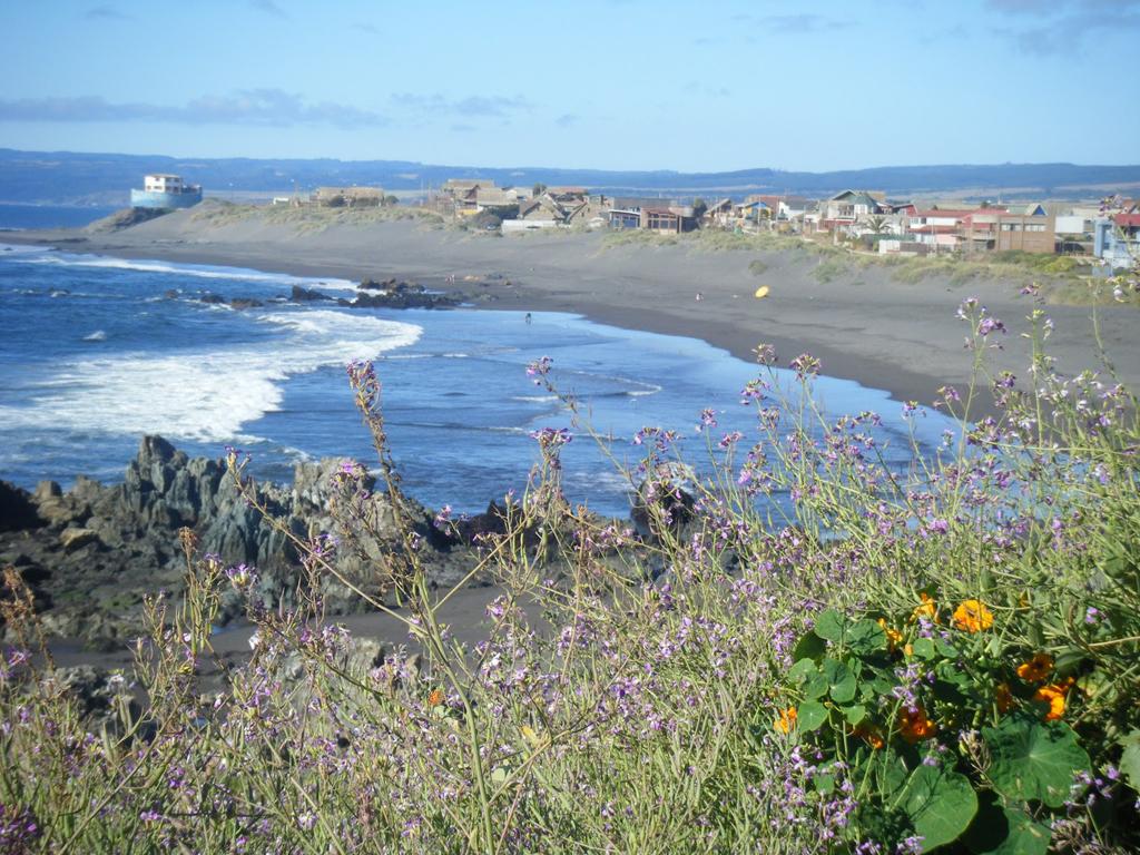 Пляж Пичилему в Чили, фото 11