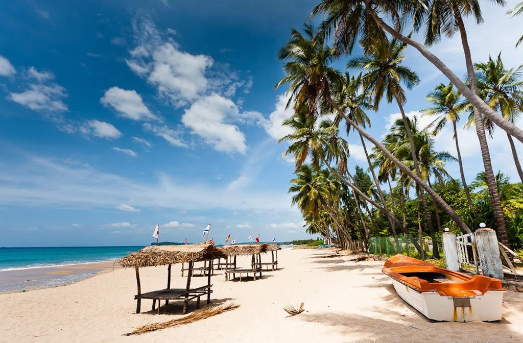 Пляж Тринкомале в Шри-Ланке, фото 12