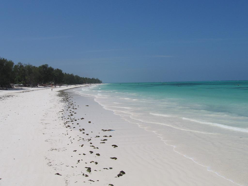 Пляж Кивенгва в Занзибаре, фото 5