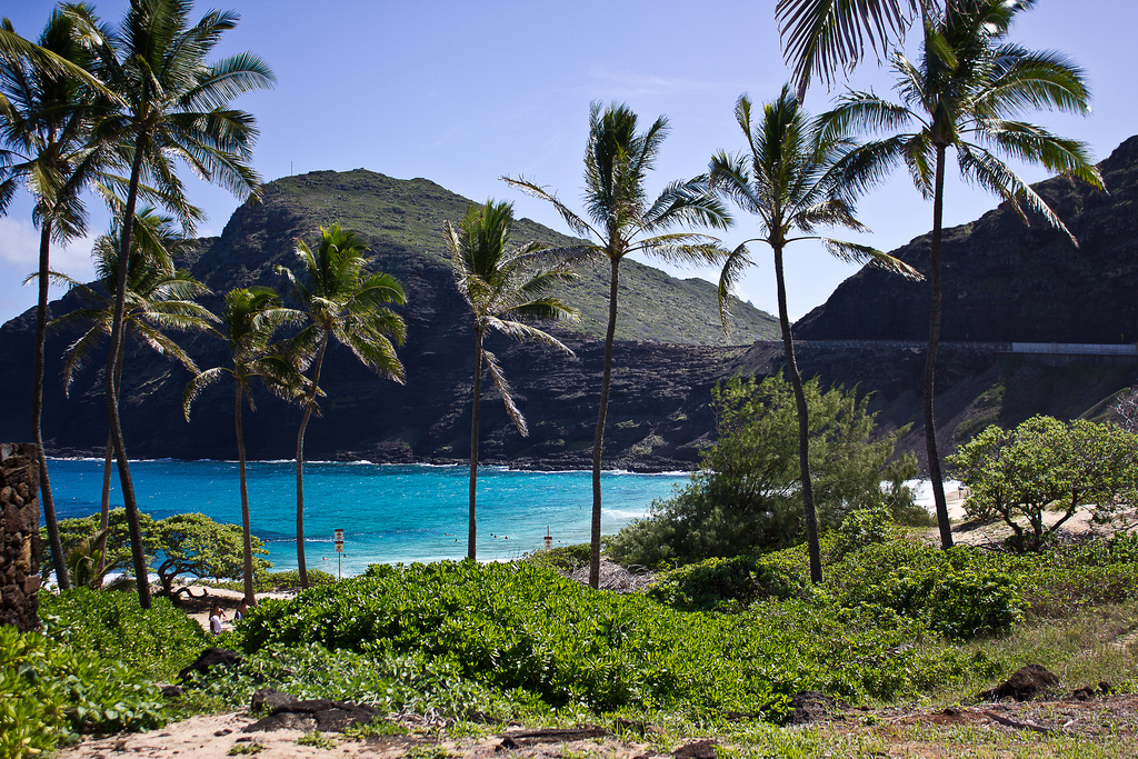Пляж Макапуу в США, фото 12