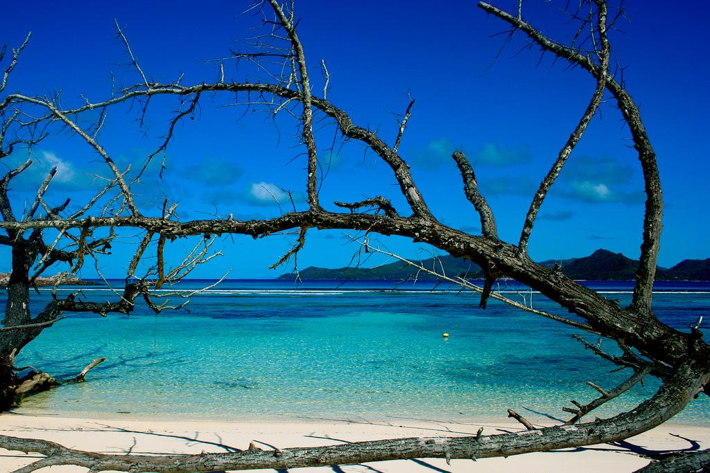 Пляж острова Ла Диг на Сейшельских островах, фото 3