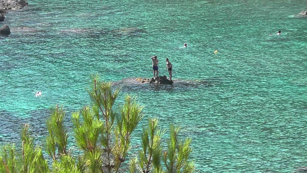 Пляж Палеокастрицы в Греции, фото 12