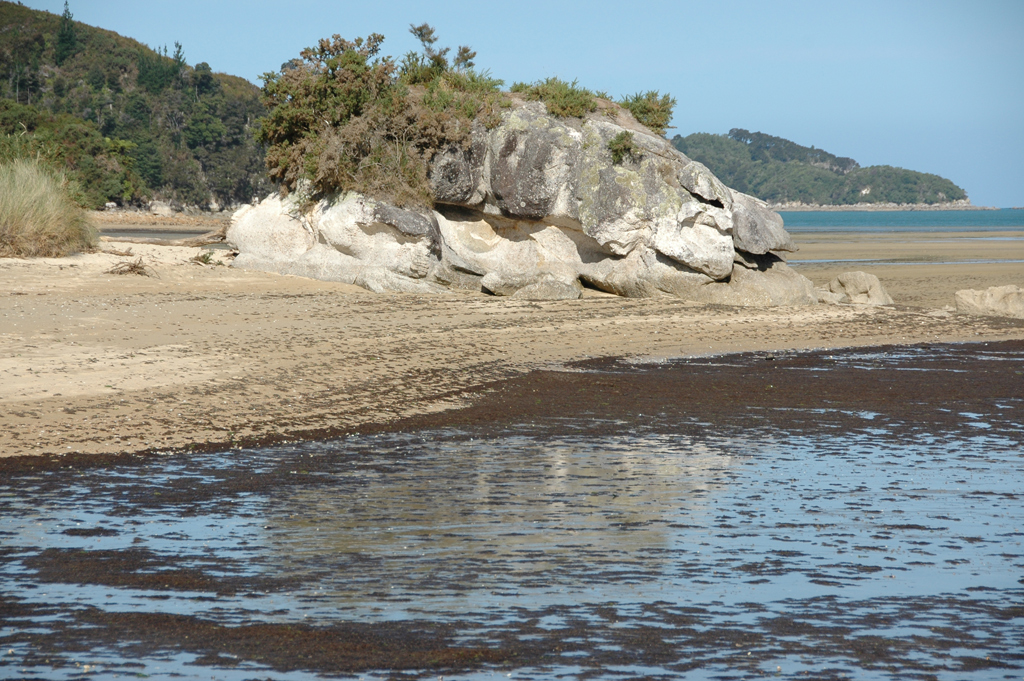 Пляж Тасман Бэй в Новой Зеландии, фото 5