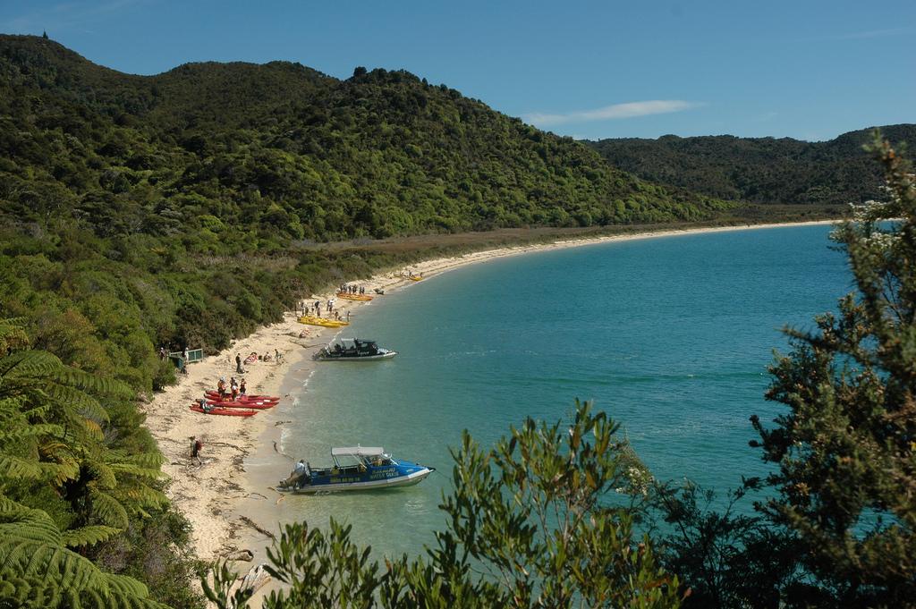 Пляж Тасман Бэй в Новой Зеландии, фото 7