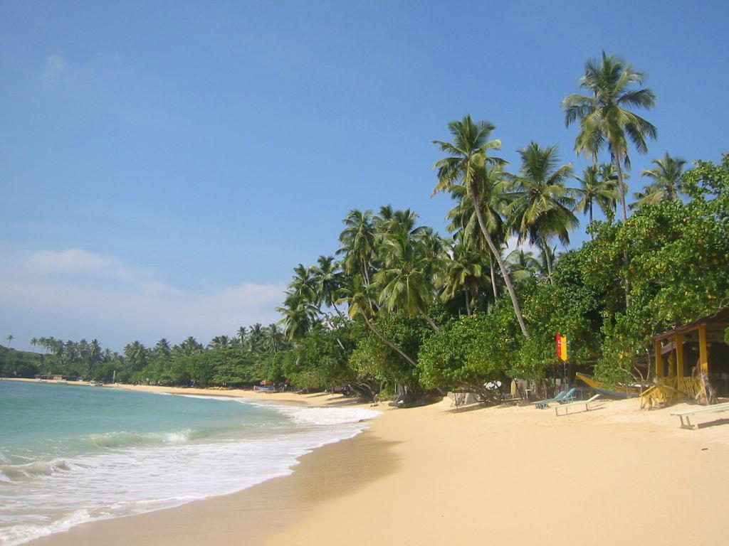 Пляж Унаватуна в Шри-Ланке, фото 4