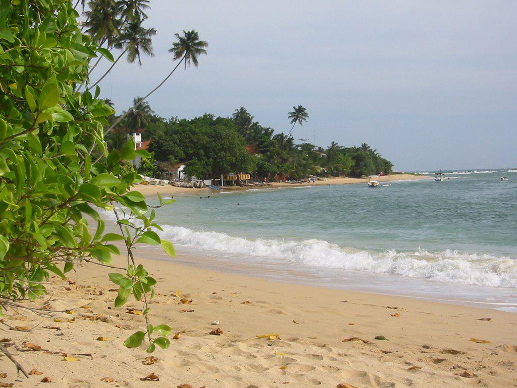 Пляж Унаватуна в Шри-Ланке, фото 15