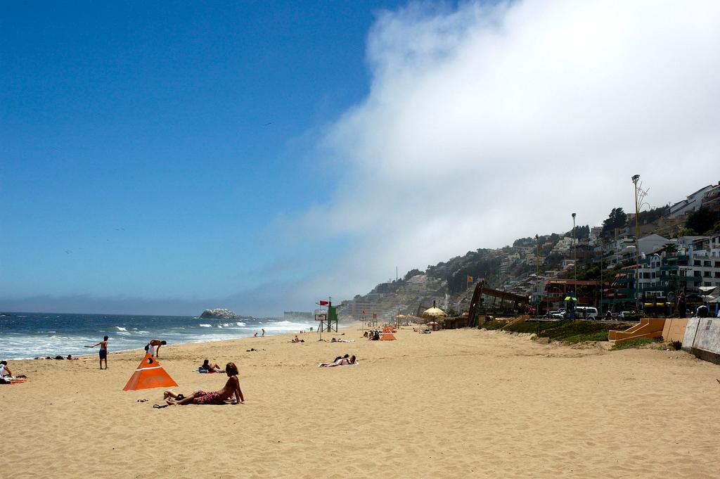 Пляж Винья-дель-Мар в Чили, фото 1