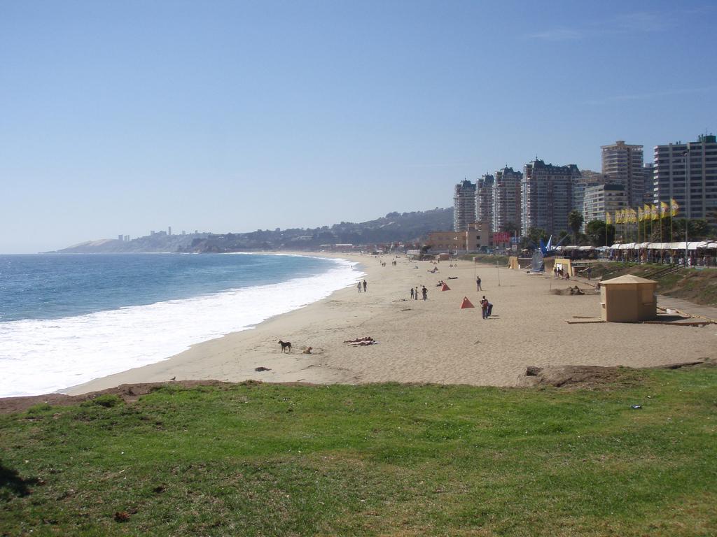 Пляж Винья-дель-Мар в Чили, фото 2