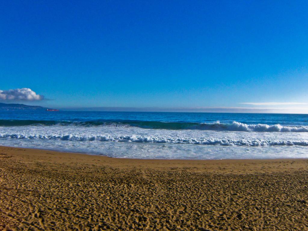 Пляж Винья-дель-Мар в Чили, фото 3