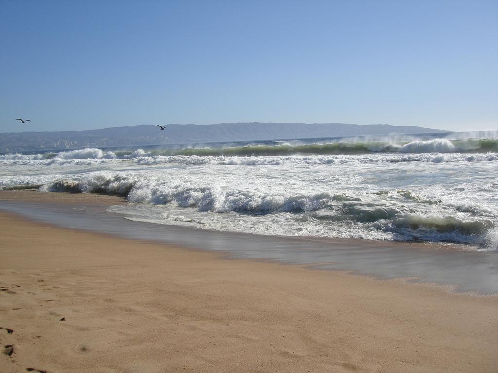 Пляж Винья-дель-Мар в Чили, фото 6