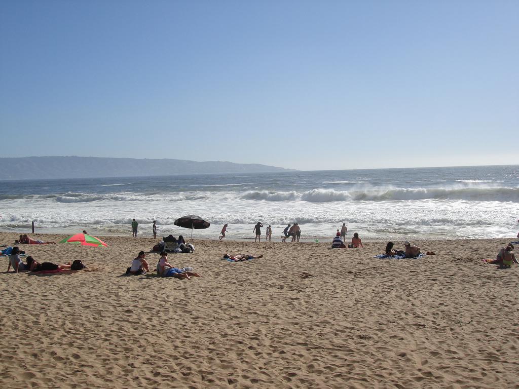 Пляж Винья-дель-Мар в Чили, фото 7
