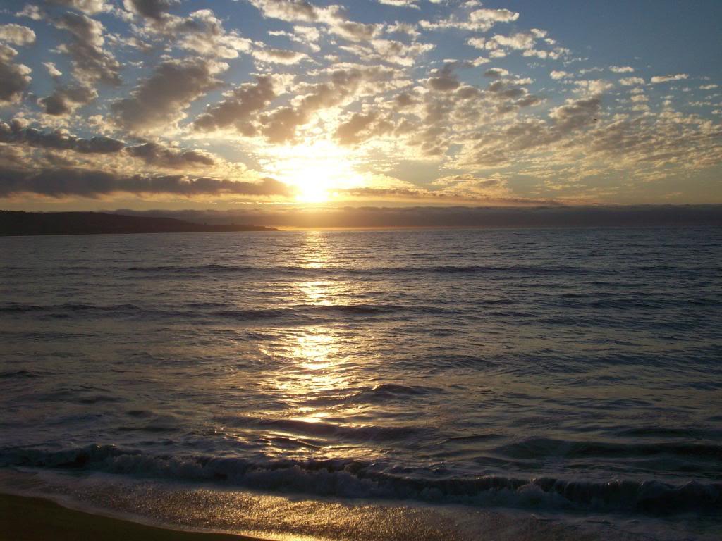 Пляж Винья-дель-Мар в Чили, фото 9