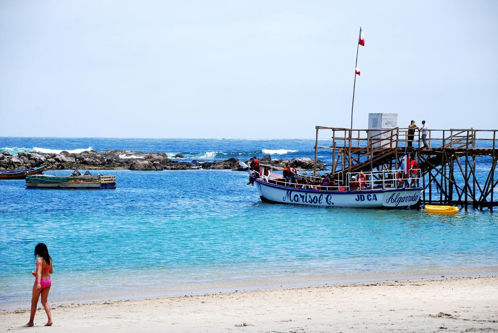Пляж Альгарробо в Чили, фото 1