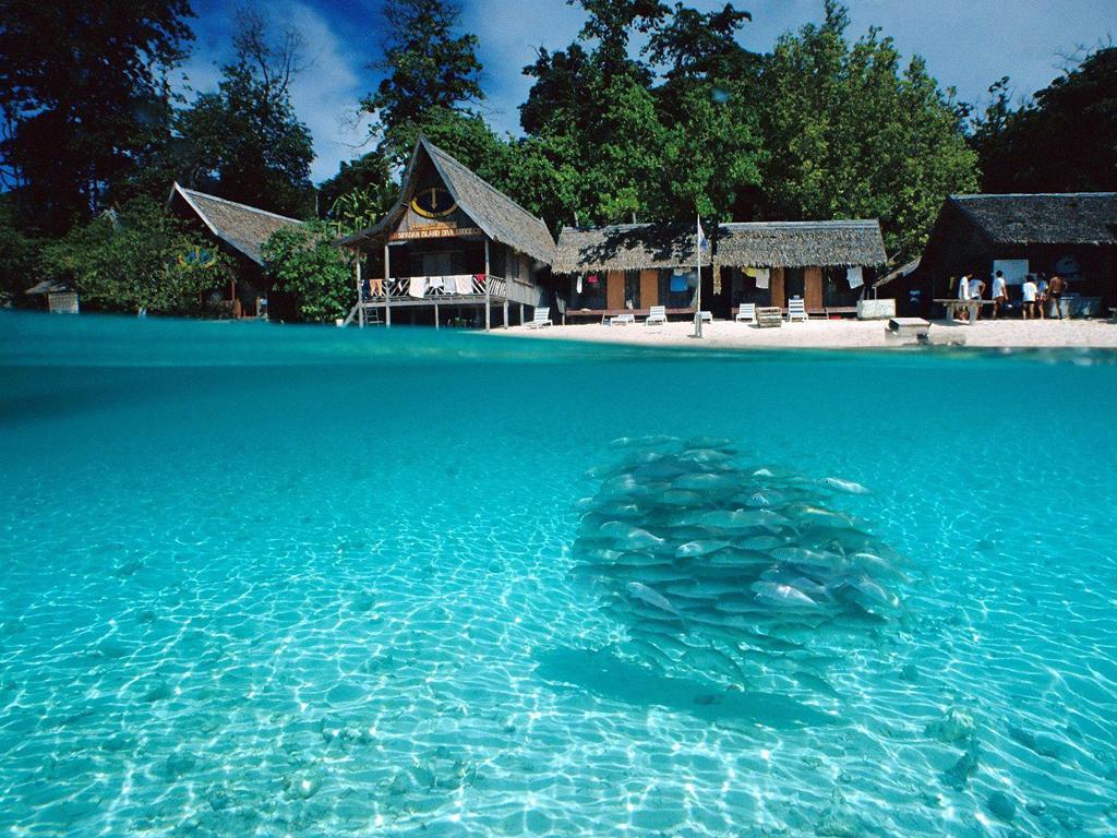 Пляж острова Сипадан в Малайзии, фото 1