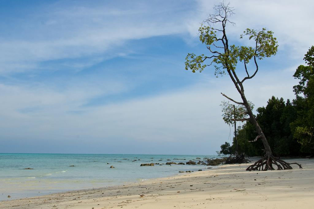 Пляж острова Хавелок в Индии, фото 2