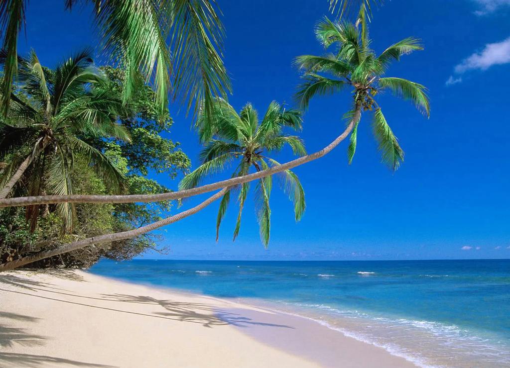 Пляж Сэнди Лайн на Барбадосе, фото 8