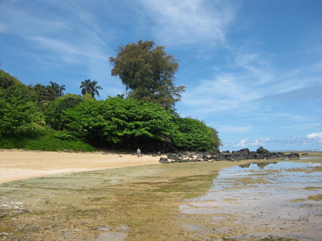 Пляж Хаена в США, фото 9