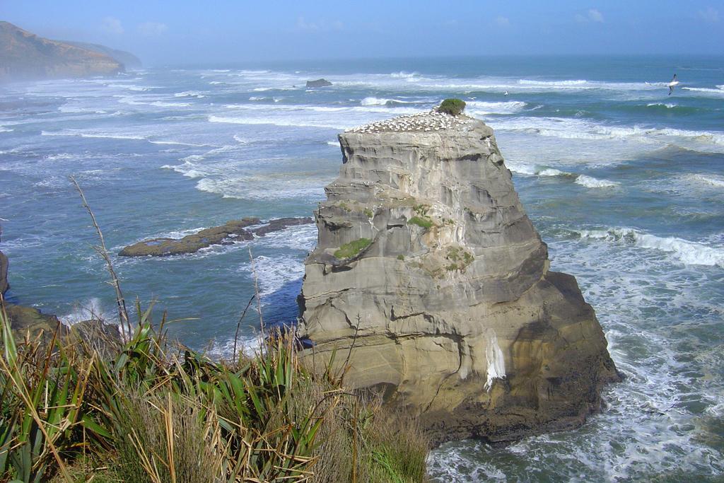 Пляж Муриваи в Новой Зеландии, фото 5