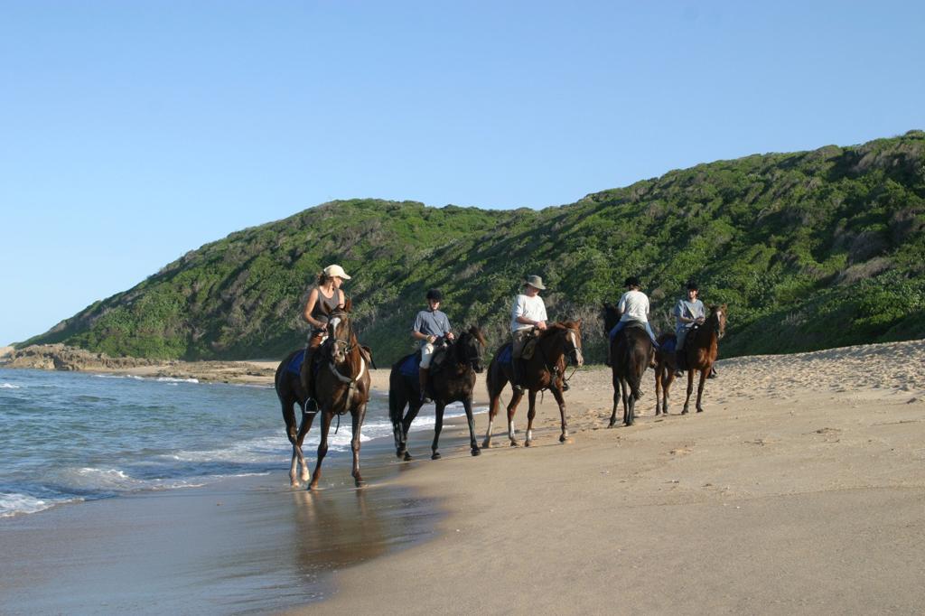 Пляж Натал в Бразилии, фото 2