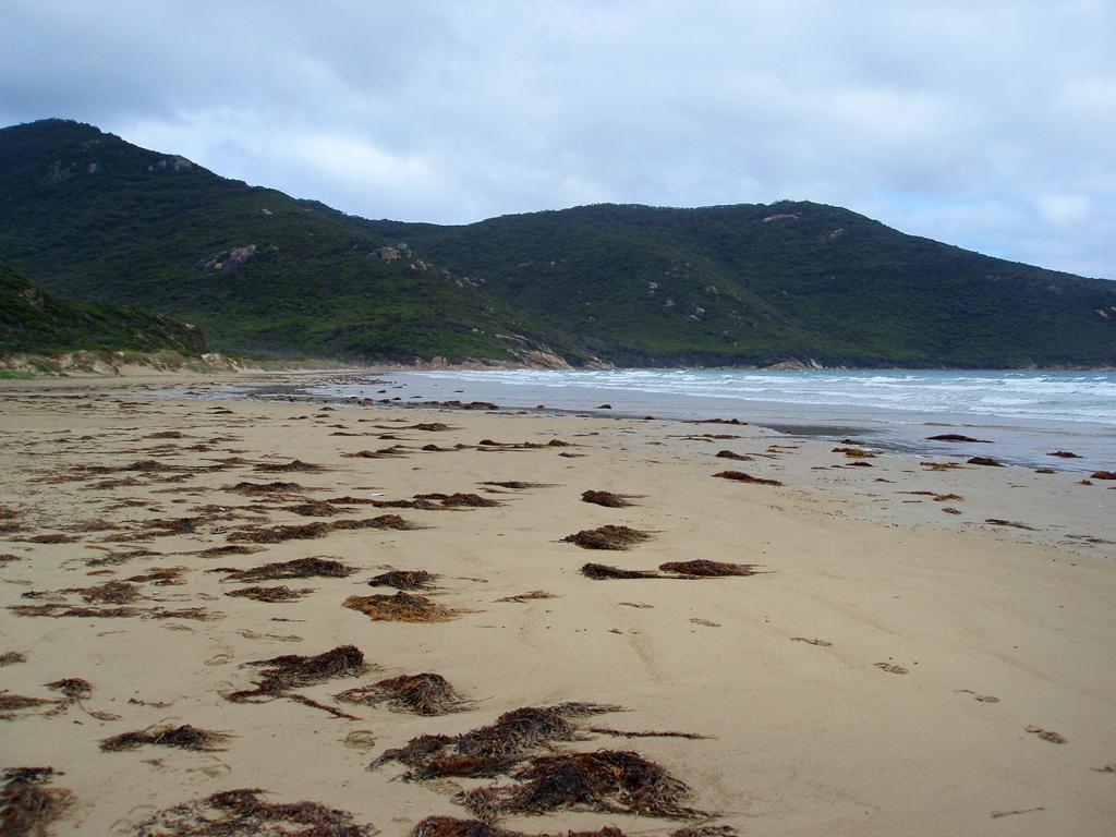 Пляж Оберон Бэй в Австралии, фото 2