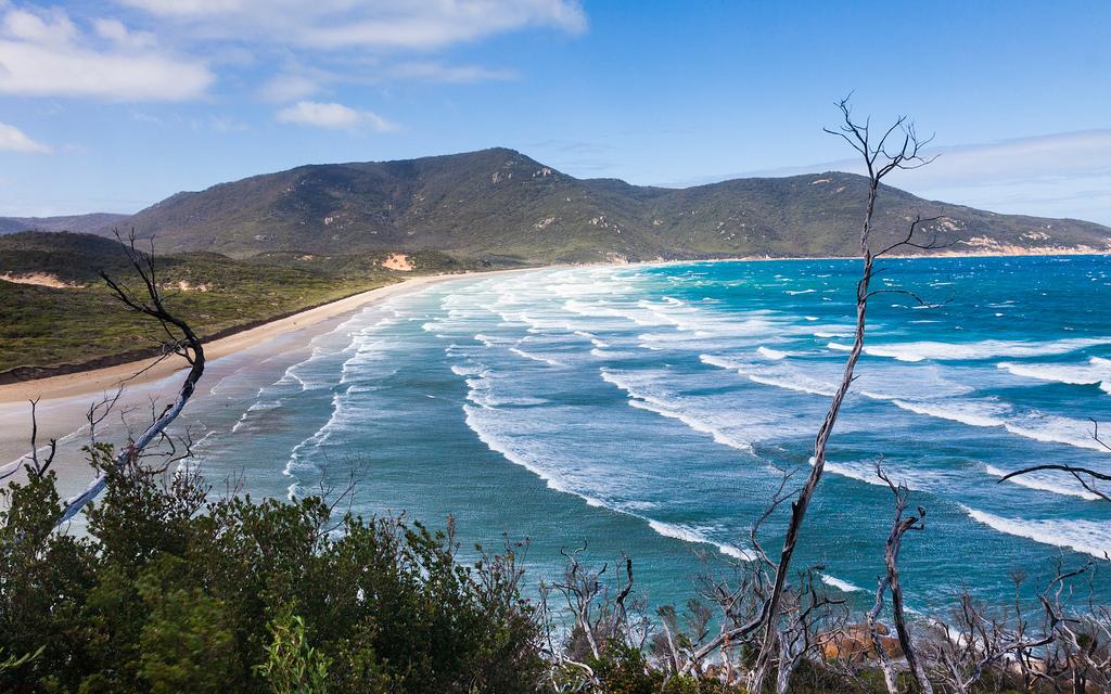 Пляж Оберон Бэй в Австралии, фото 10
