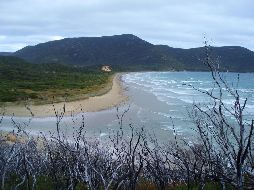 Пляж Оберон Бэй в Австралии, фото 11