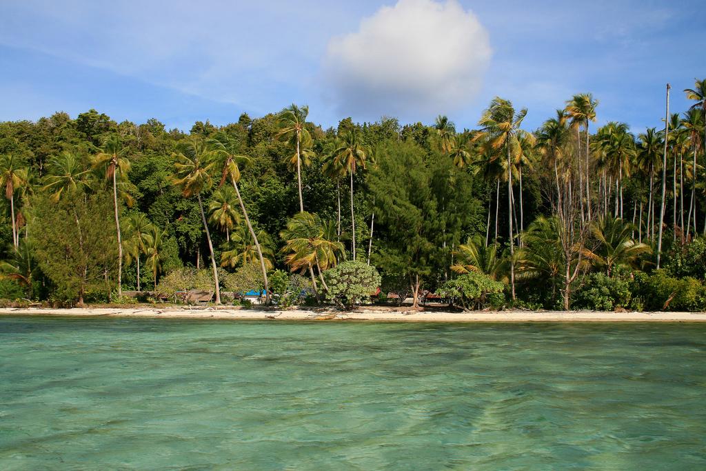 Пляж Раджа-Ампат в Индонезии, фото 3