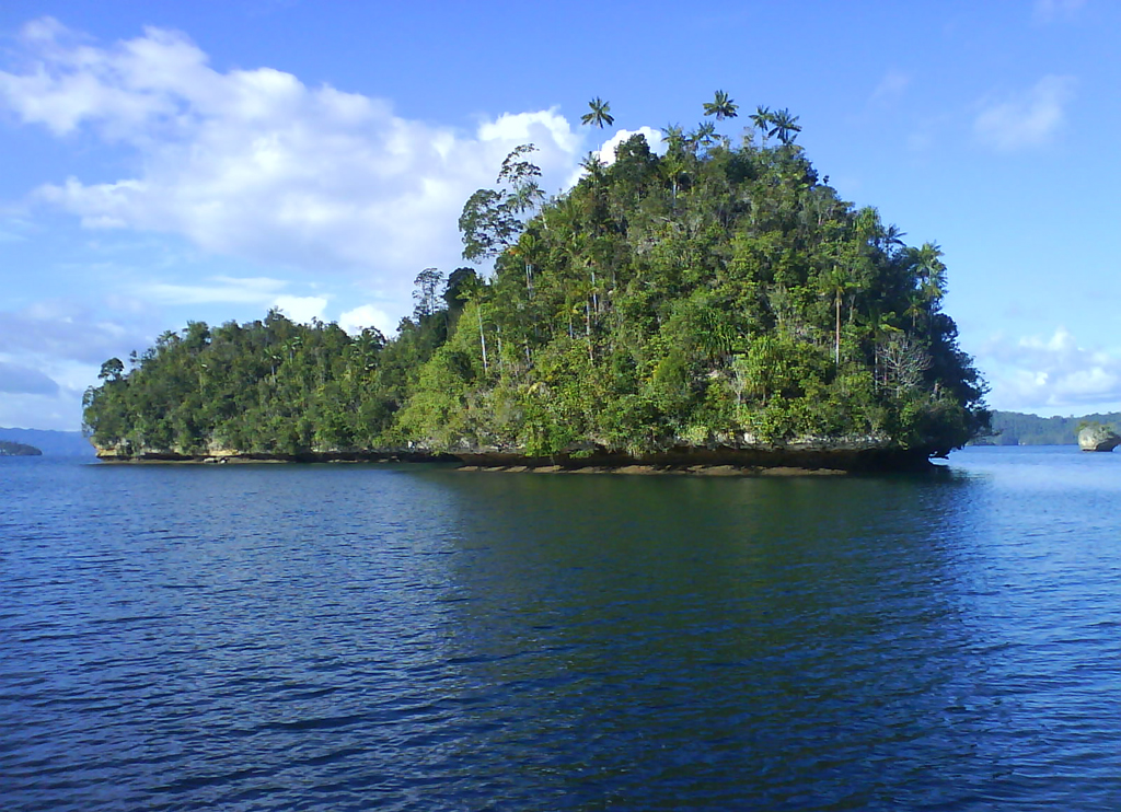 Пляж Раджа-Ампат в Индонезии, фото 6
