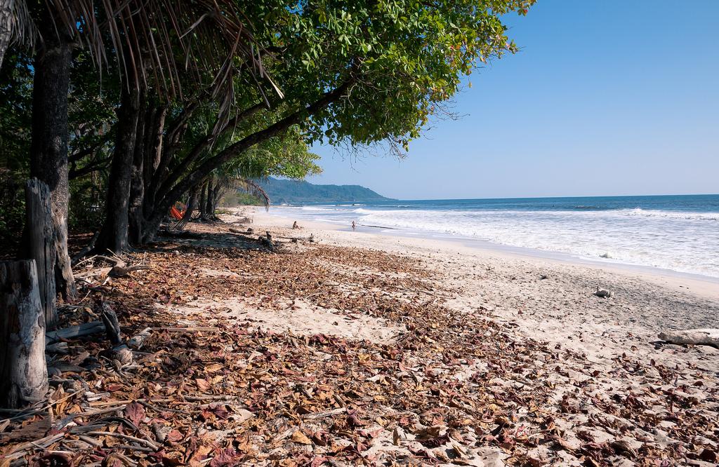 Пляж Санта Тереза в Коста-Рике, фото 1