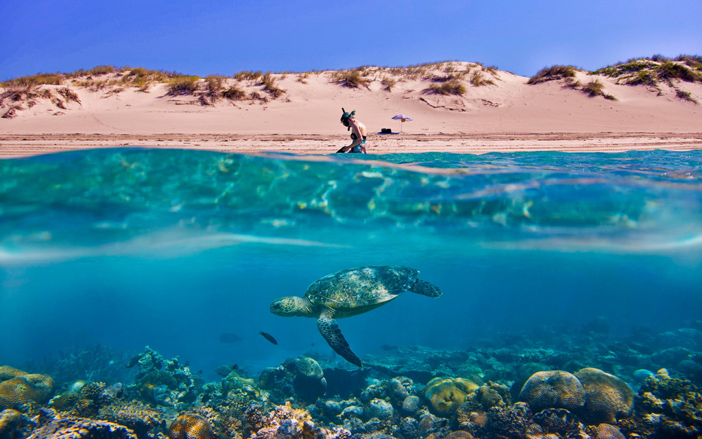Пляж Туртл на Ямайке, фото 1