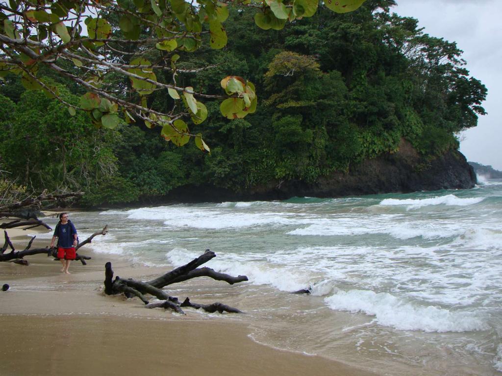 Пляж Туртл на Ямайке, фото 5