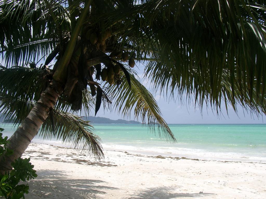 Пляж Анс Волберт на Сейшельских островах, фото 10
