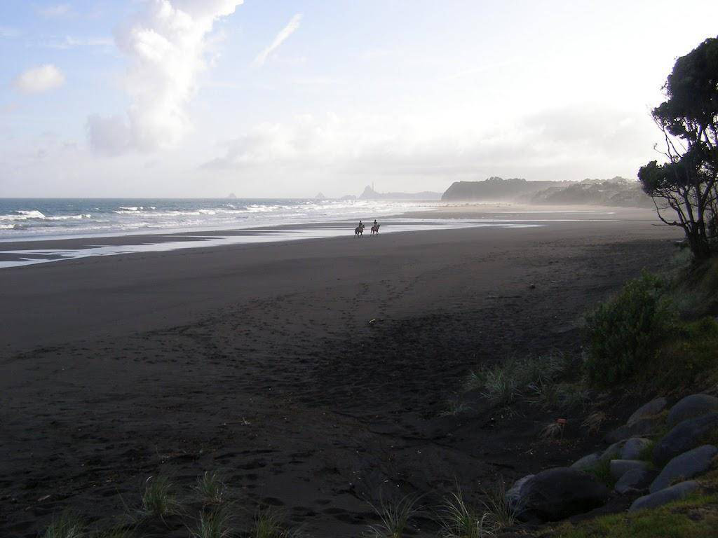 Пляж Оакура в Новой Зеландии, фото 3