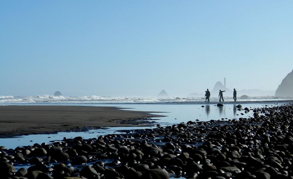 Пляж Оакура в Новой Зеландии, фото 5