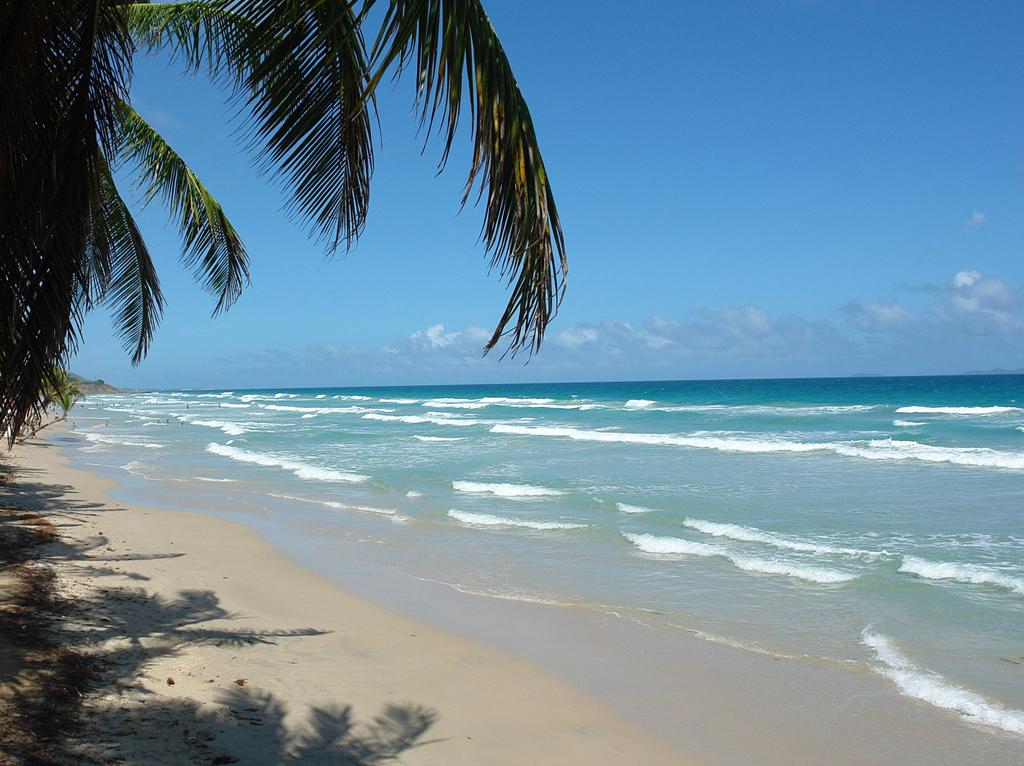 Пляж Плайя Эль Яке в Венесуэле, фото 3