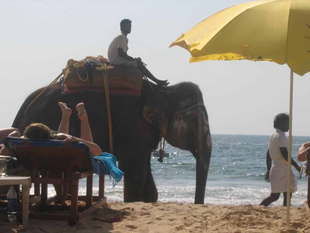 Пляж Кавелоссим в Индии, фото 1