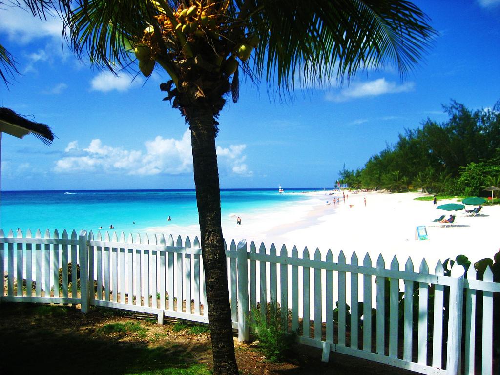 Пляж Маквелл Бич в Барбадосе, фото 6