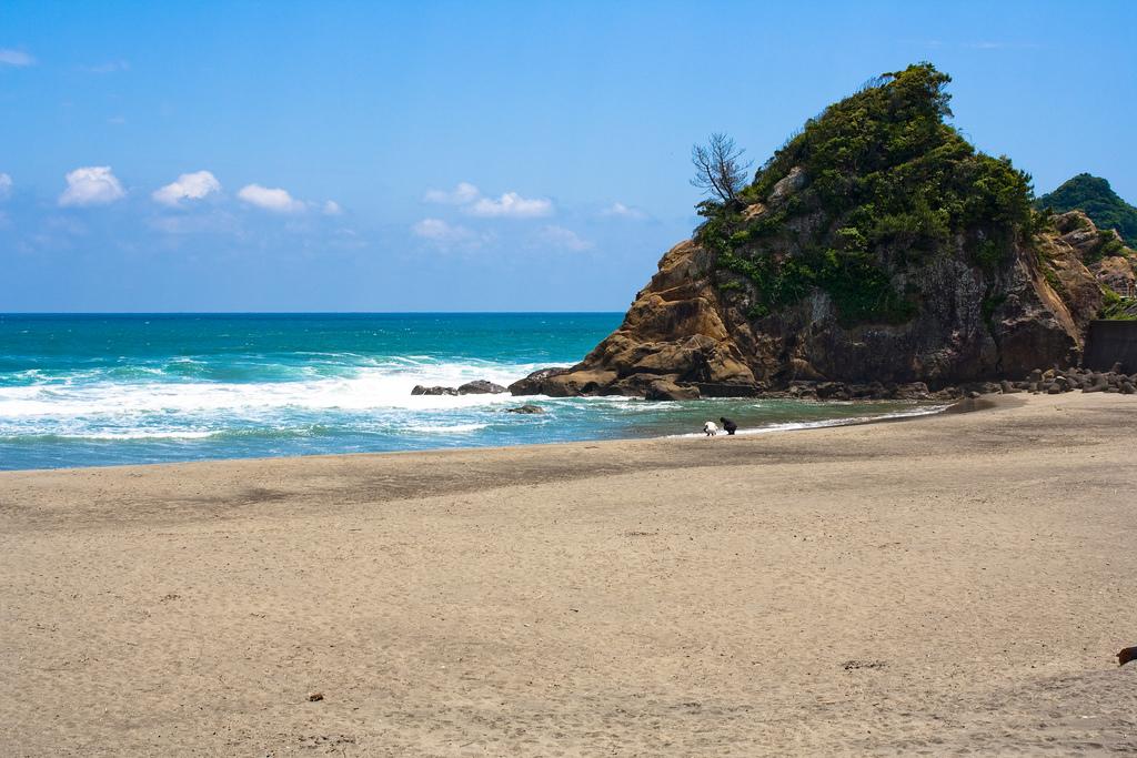 Пляж Миядзаки в Японии, фото 2