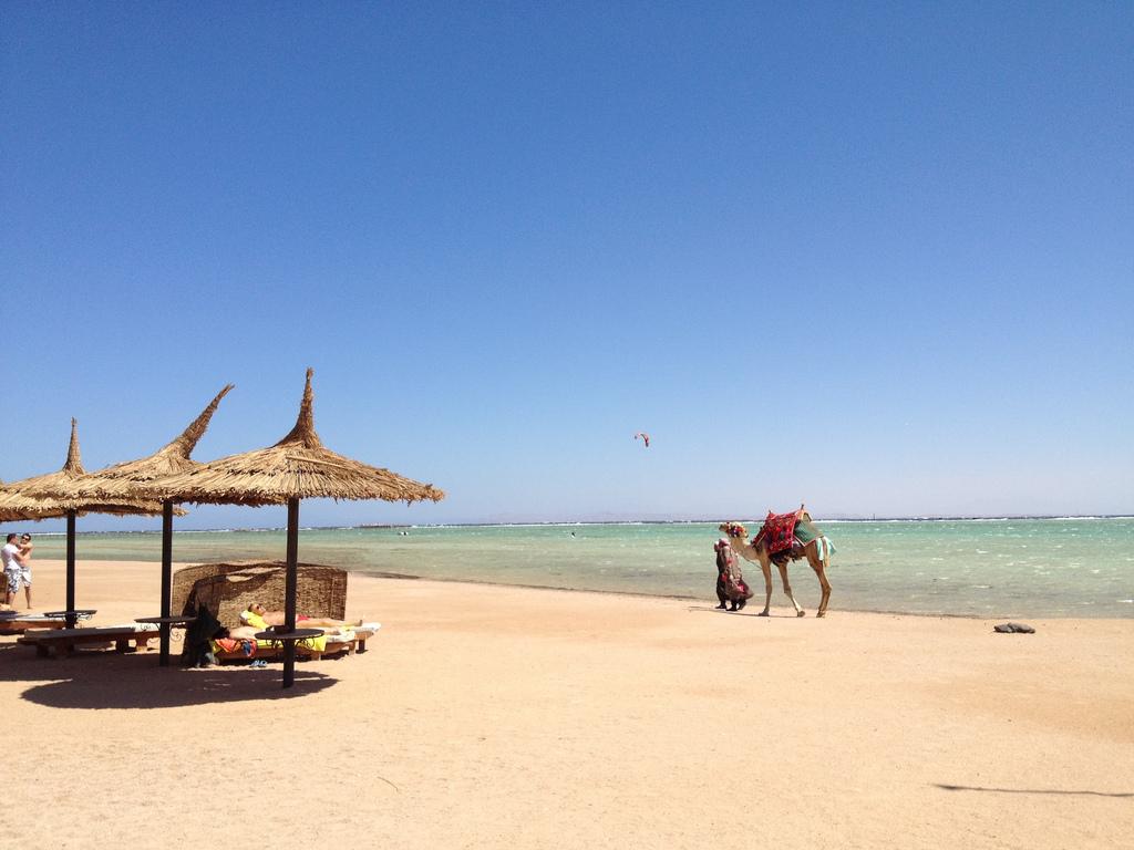 Пляж Набк-Бэй в Египете, фото 2