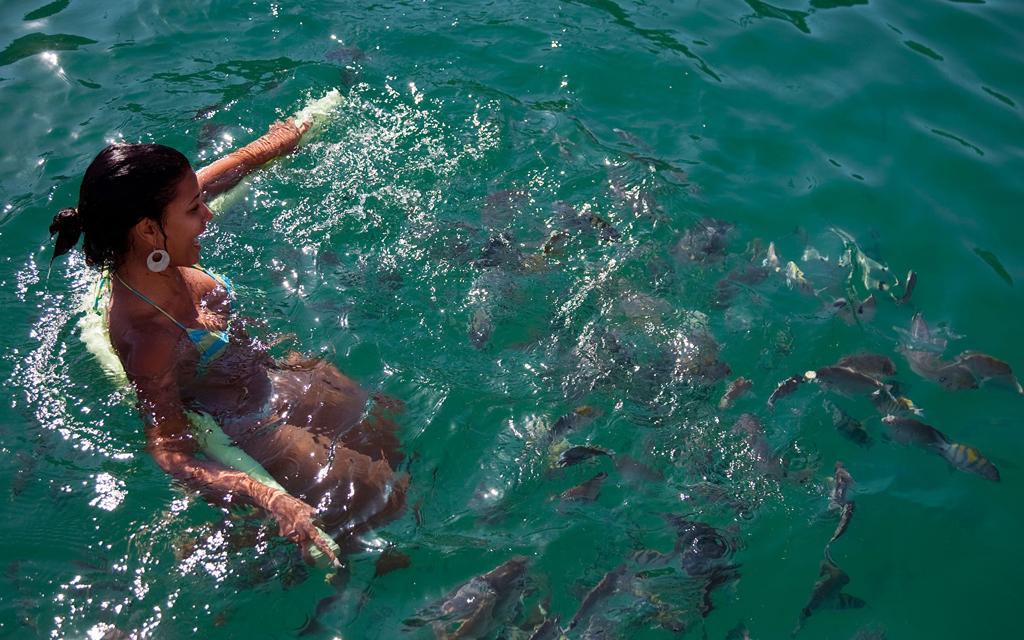 Пляж острова Илья Гранде в Бразилии, фото 1