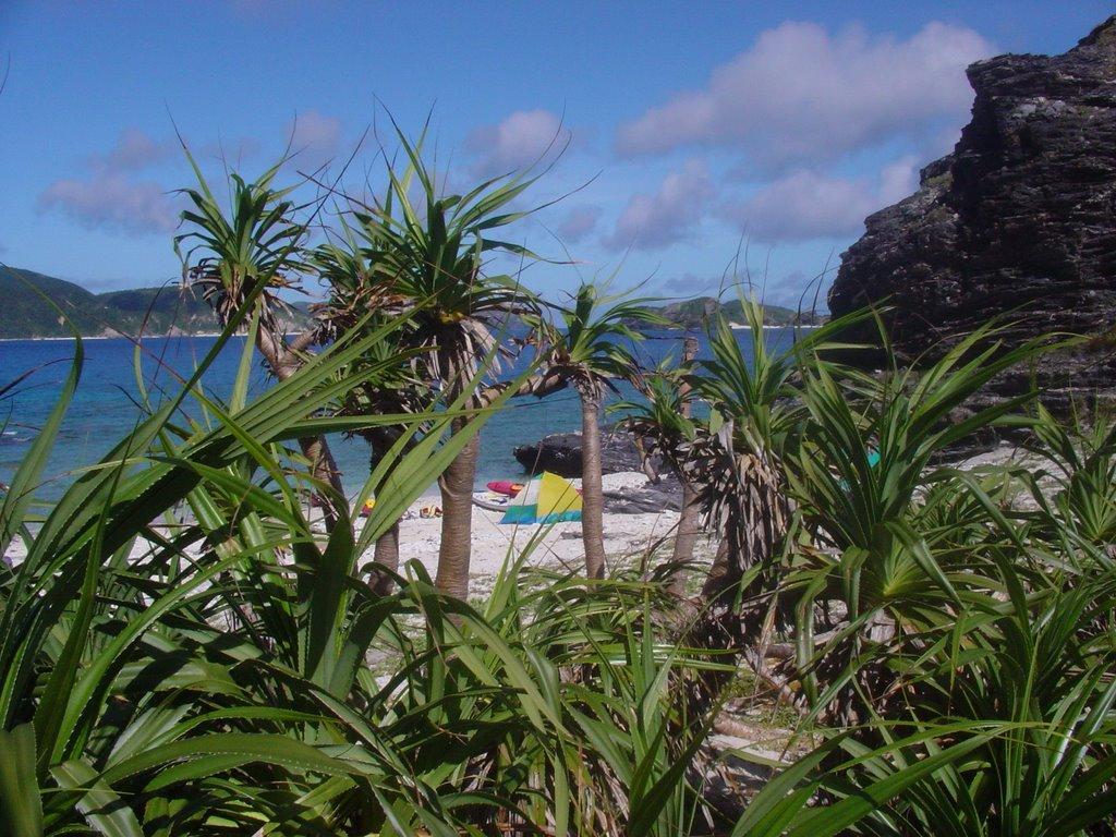 Пляж острова Керама в Японии, фото 8