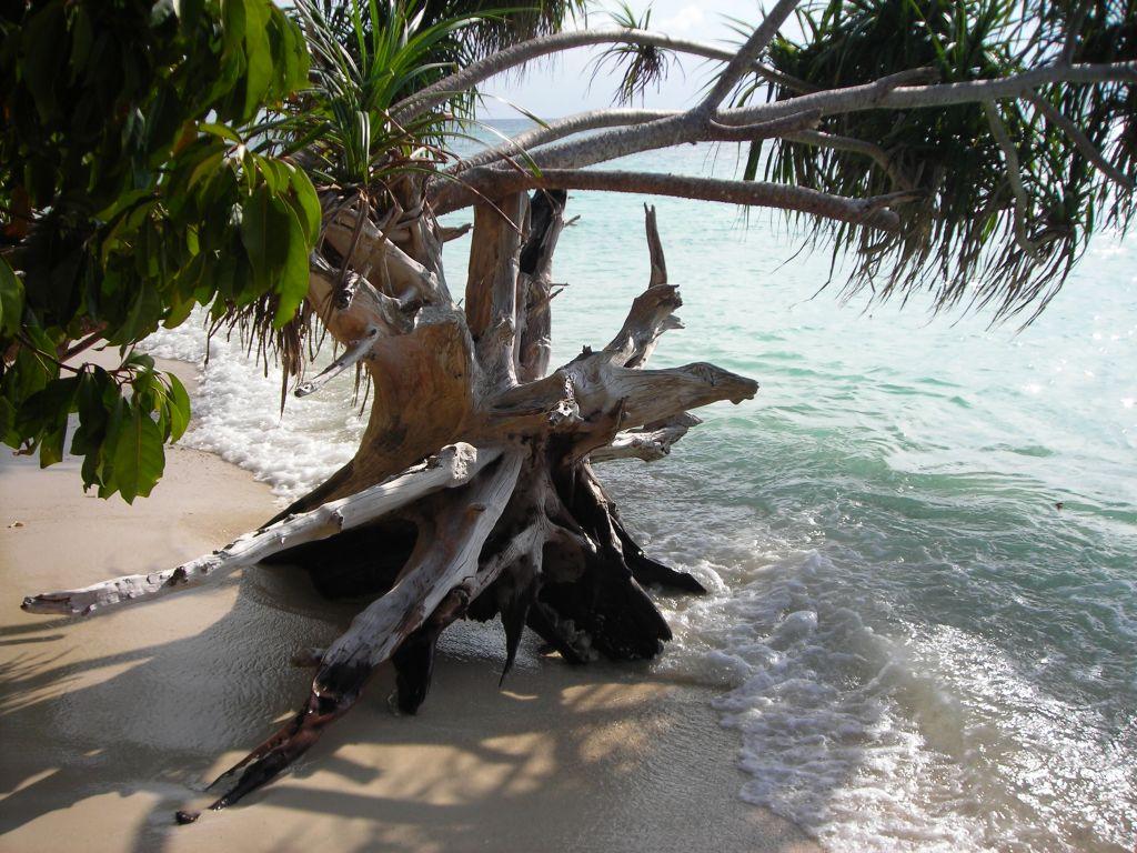 Пляж острова Ланкайан в Малайзии, фото 9