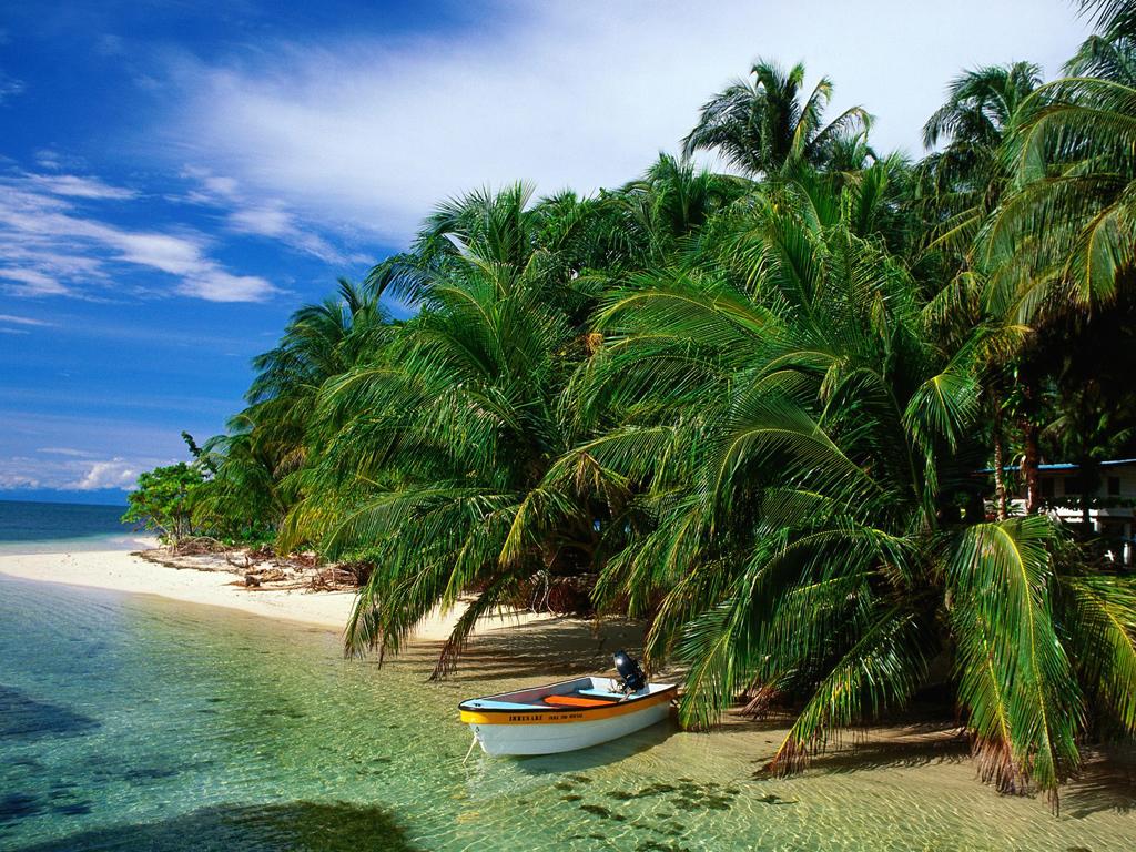 Пляж Панама Бич в США, фото 1