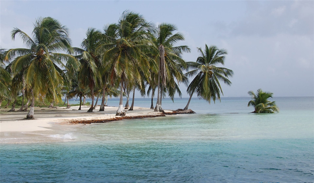 Пляж Панама Бич в США, фото 8