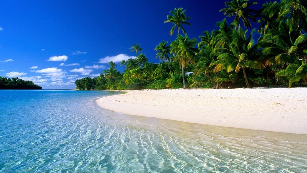 Пляж Панама Бич в США, фото 9